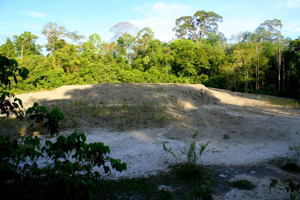 Mud volcano in Tabin Wildlife Reserve, Sabah, Malaysia