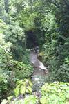Creek along the Hana road