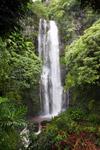 Waterfall along the Hana road