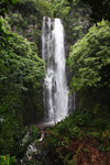Waterfall along the Hana Highway