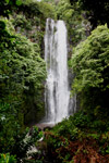 Waterfall along the road to Hana