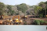 Bulldozers, tractors, and other earth-moving vehicles in the rainforest