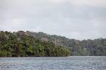 Rainforest of Barro Colorado Island [panama_0081]
