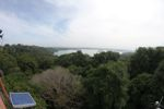 Atop a canopy tower on Barro Colorado Island