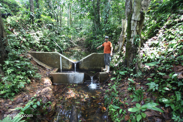 Weir used for measuring water flow in Aqua Salud, the study area. Photo by Rhett A. Butler.