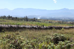 Countryside near Wamena