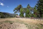 Fence around a Papuan village