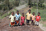 Kids among sweet potato fields in the highlands of New Guinea [papua_0159]