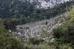 Limestone mountains in New Guinea [papua_0799]