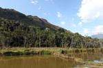 Pond in New Guinea
