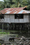 Lake Sentani homes on stilts [papua_1001]