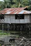 Lake Sentani homes on stilts [papua_1001]