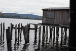 Lake Sentani homes on stilts [papua_1017]
