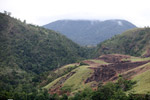 Deforestation around Lake Sentani [papua_1093]