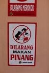 Dilarang Makan Pinang - no betelnut juice spitting