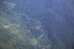 Aerial view of logged forest in New Guinea [papua_5012]
