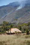 Lani grass hut [papua_5067]