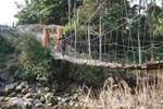 Hanging bridge in New Guinea