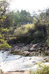 Hanging bridge in New Guinea [papua_5301]