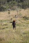 Dani man hunting [papua_5417]