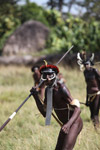Dani men in ceremonial battle [papua_5476]