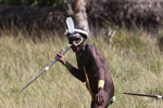 Dani men in ceremonial battle [papua_5479]