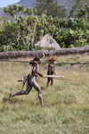 Dani men in ceremonial battle [papua_5492]