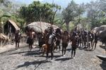 Dani village [papua_5619]