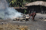 Roasting hog in New Guinea