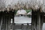 Dani village [papua_5963]