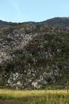 Limestone rock formations in New Guinea [papua_6033]