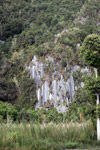 Limestone rock formations in New Guinea [papua_6088]