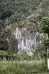 Limestone rock formations in New Guinea [papua_6088]