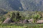 Dani village [papua_6096]