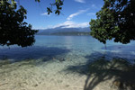 Looking across Manokwari Bay at the rainforests of the Arfak Mountains