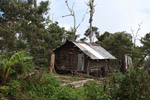 Traditional Mouley hut in the Arfak highlands outside of Manokrawi [west-papua_0550]
