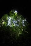New Guinea rainforest cave