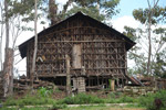 Rumah Kaki Seribu (thousand feet house), a traditional hut in the highlands of West Papua, New Guinea [west-papua_5261]