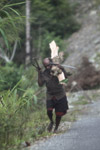 Papuan man carrying chopped wood