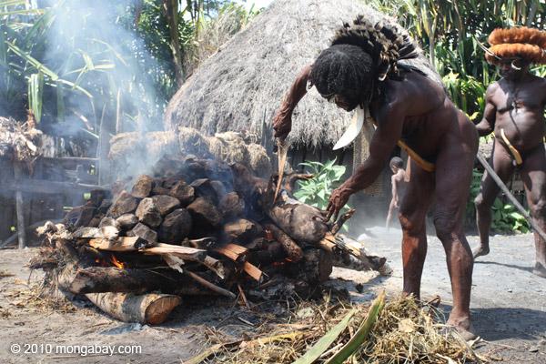 Dani man roasting hog [papua_0516]