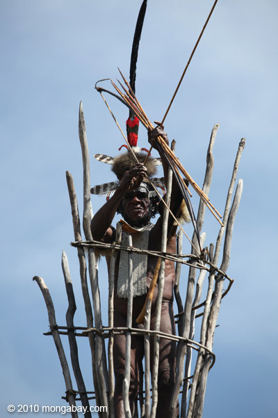Dani elder in traditional dress with a bow and arrow atop a watch tower [papua_5403]