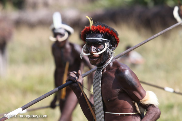 Dani man in traditional battle array on the island of New Guinea. Once one of the remotest jungles on Earth, this island is seeing rapid change due to industrial-scale logging and mining. Photo by: Rhett A. Butler.