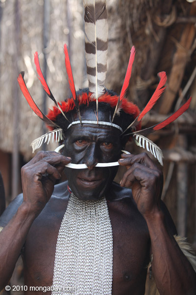 Papuan man adjusting the bone in his nose