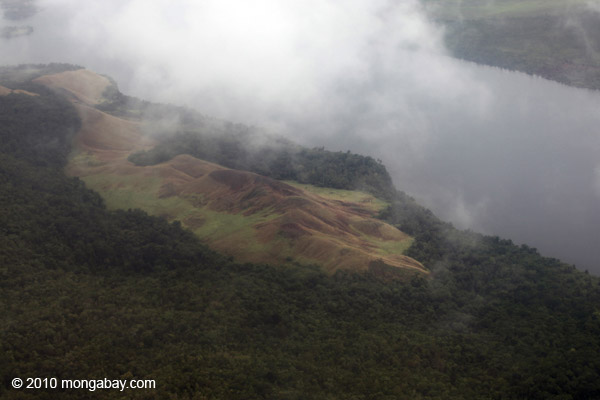 Deforestation near Lake Sentani, Papua. Photo by Rhett A. Butler.
