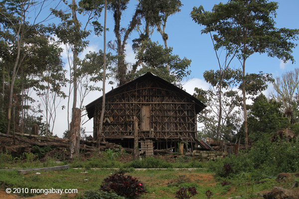A traditional house in West Papua's Arfak Mountains, not far from oil palm plantations operated by state-owned PTPN II and Chinese-owned Yong Jing Investment. Photo: Rhett A. Butler