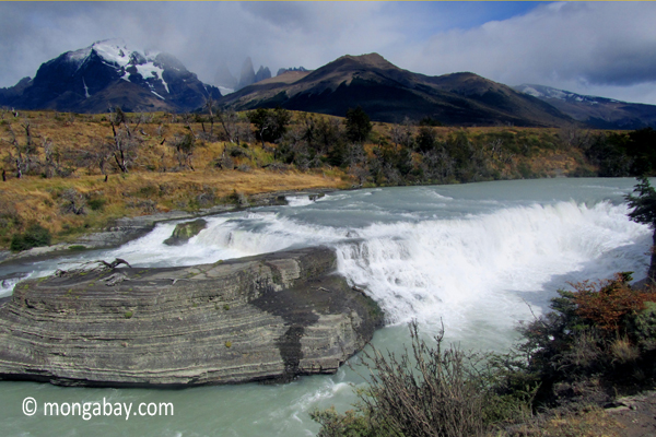 Glacial stream in Torres del Paine National Park. Photo by: Rhett A. Butler.