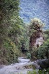Road from Cuzco to Wayqecha to Pilcopata to Villa Carmen