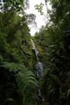 Waterfall in the upper Amazon [manu_0078]