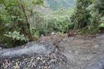 Banana truck accident in Peru
