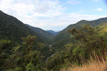 View of the Amazon rainforest down the Kosnipata Valley [manu_0180]